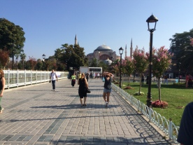 Blue Mosque from a distance